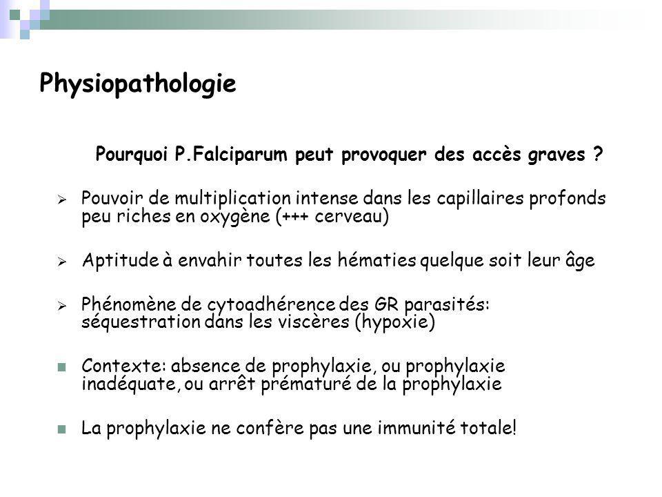 Physiopathologie Pourquoi P.Falciparum peut provoquer des accès graves