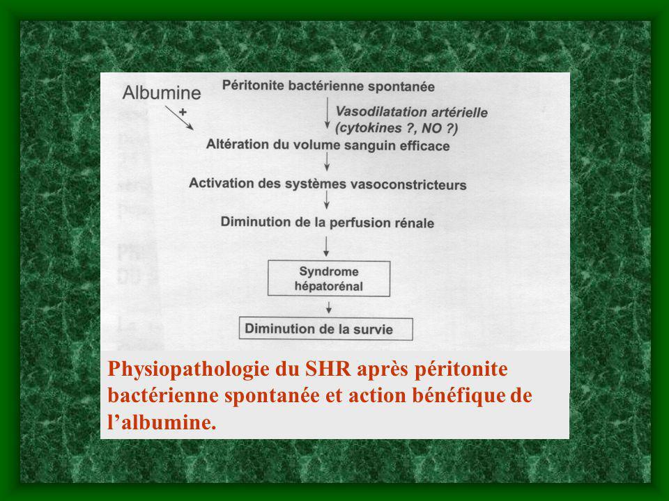 Physiopathologie du SHR après péritonite bactérienne spontanée et action bénéfique de l'albumine.