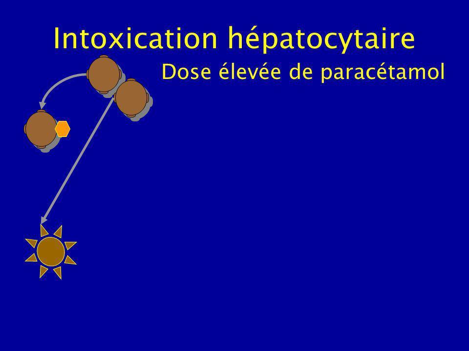 Intoxication hépatocytaire