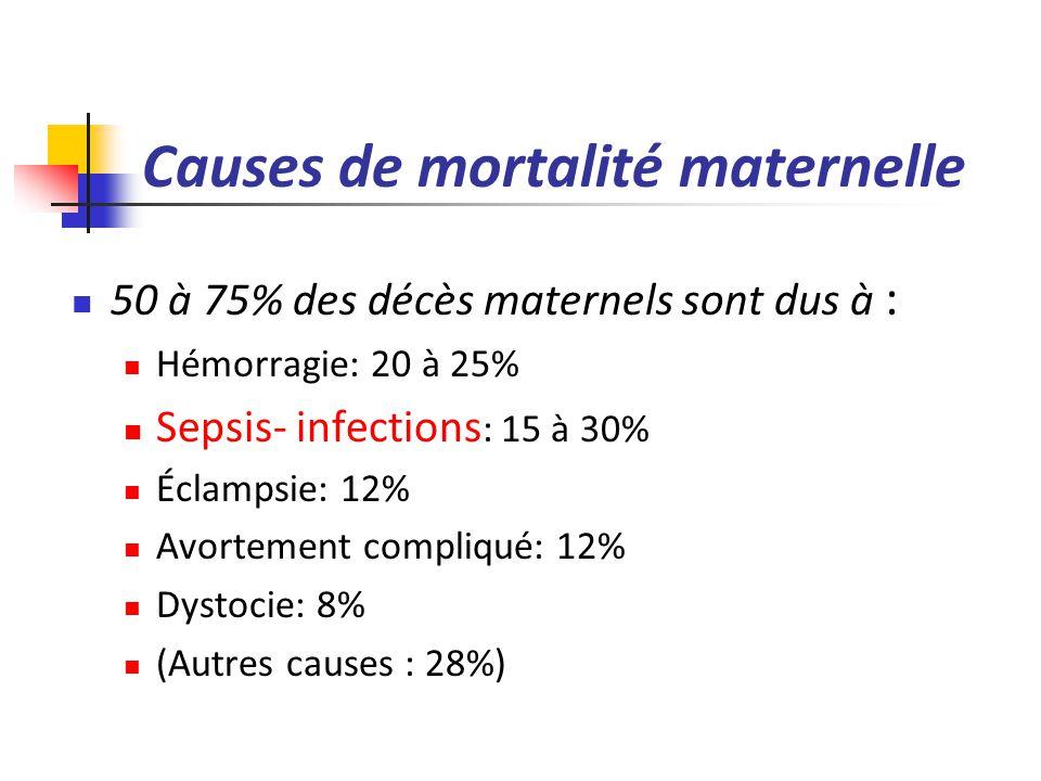 Causes de mortalité maternelle