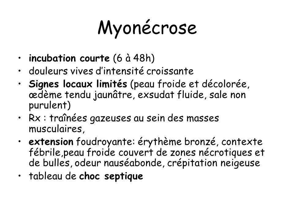Myonécrose incubation courte (6 à 48h)