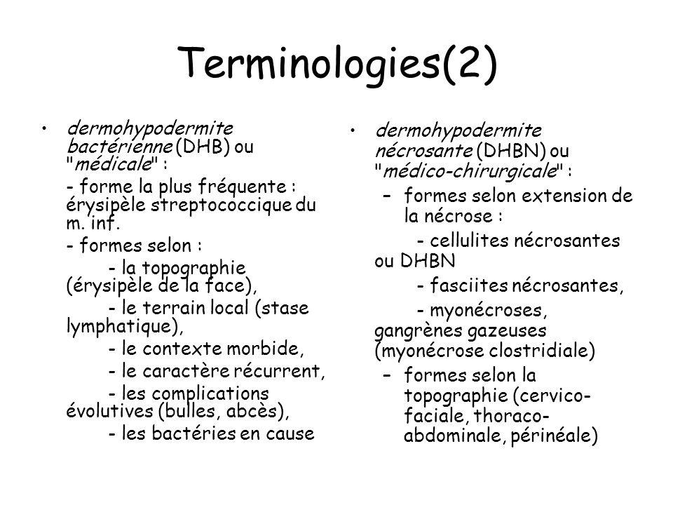 Terminologies(2) dermohypodermite bactérienne (DHB) ou médicale :