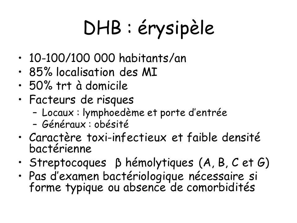 DHB : érysipèle 10-100/100 000 habitants/an 85% localisation des MI