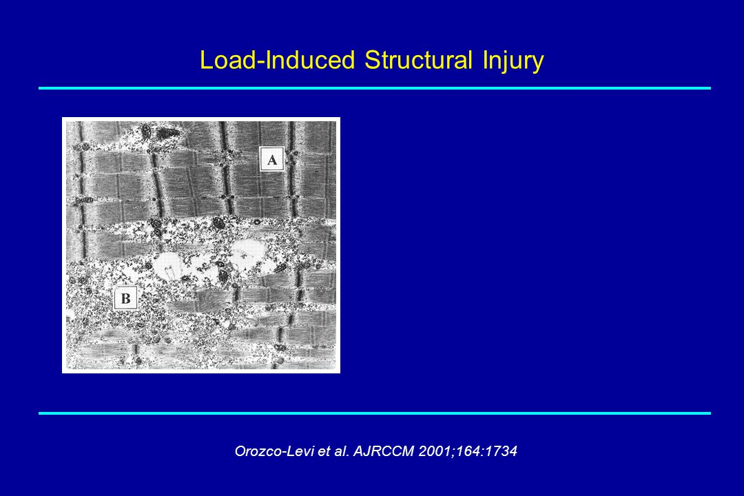 Load-Induced Structural Injury