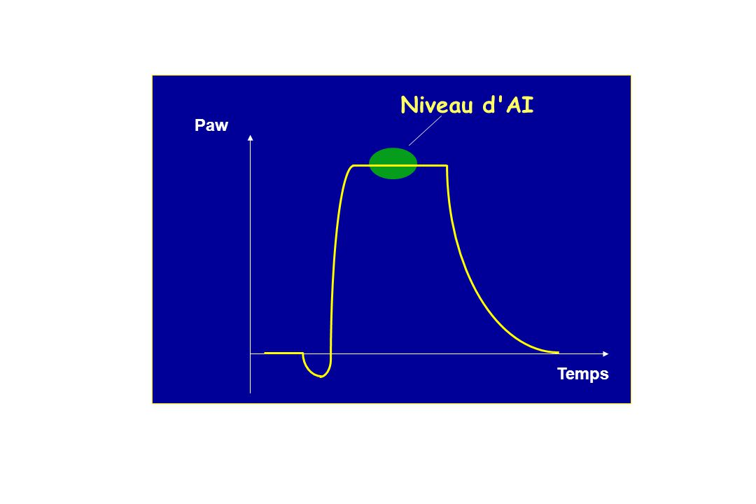 Niveau d AI Paw Temps