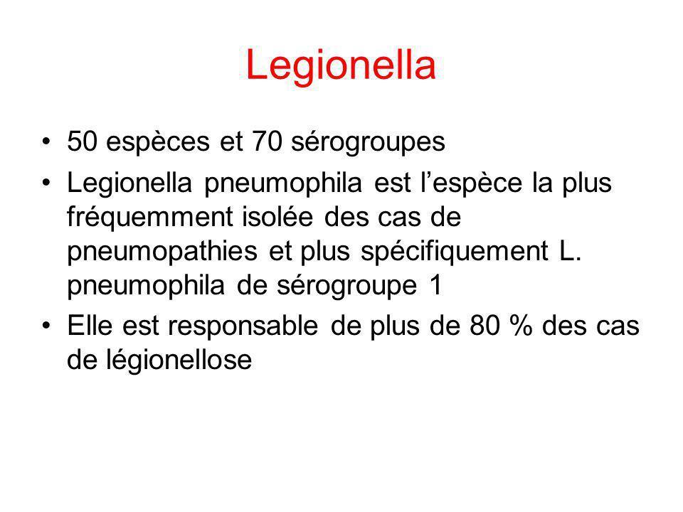 Legionella 50 espèces et 70 sérogroupes