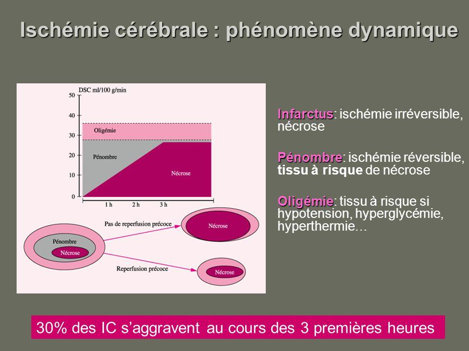 Ischémie cérébrale : phénomène dynamique