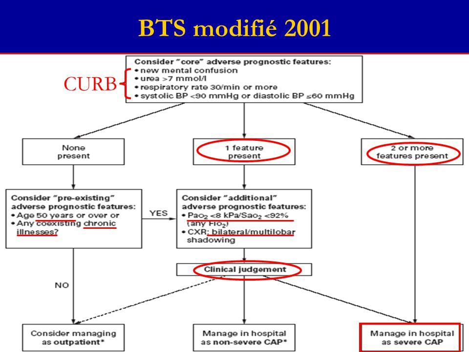 BTS modifié 2001 CURB