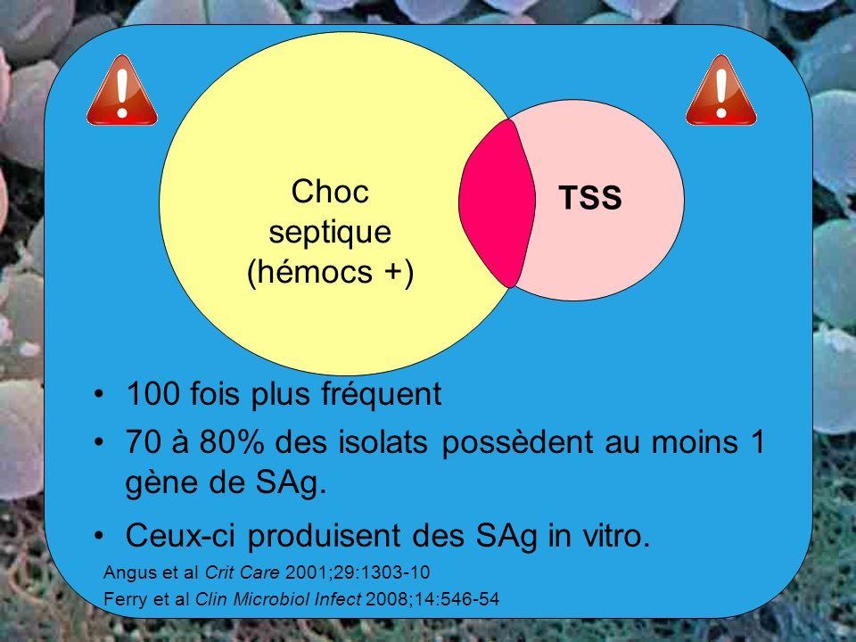 Choc septique (hémocs +)