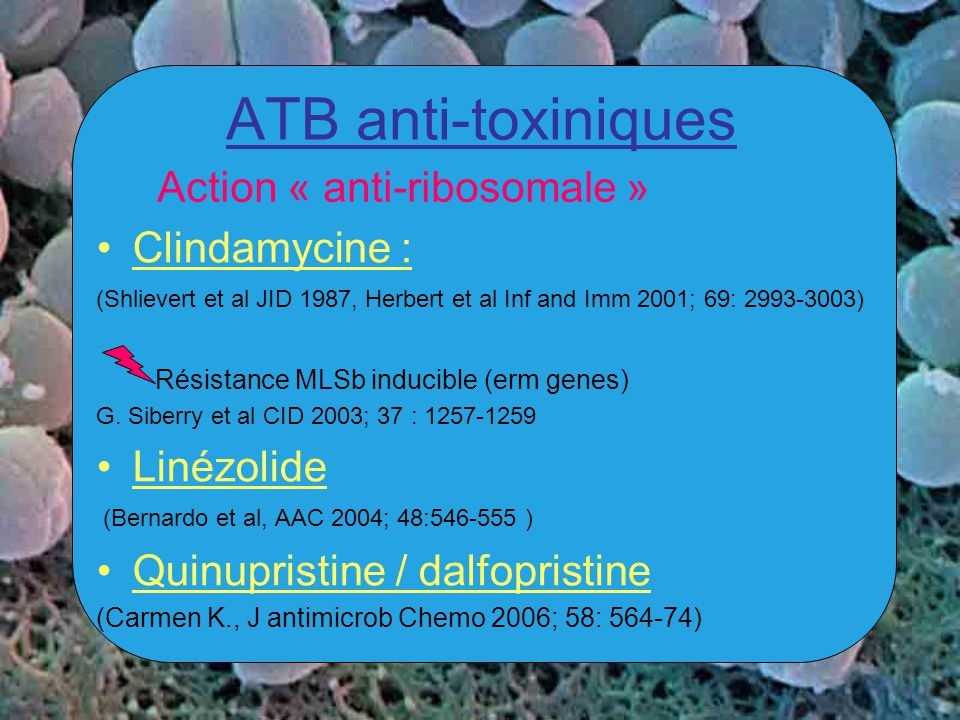 ATB anti-toxiniques Action « anti-ribosomale » Clindamycine :
