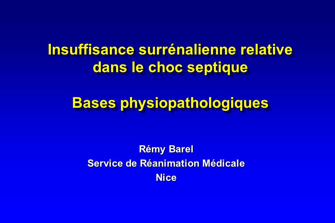 Rémy Barel Service de Réanimation Médicale Nice