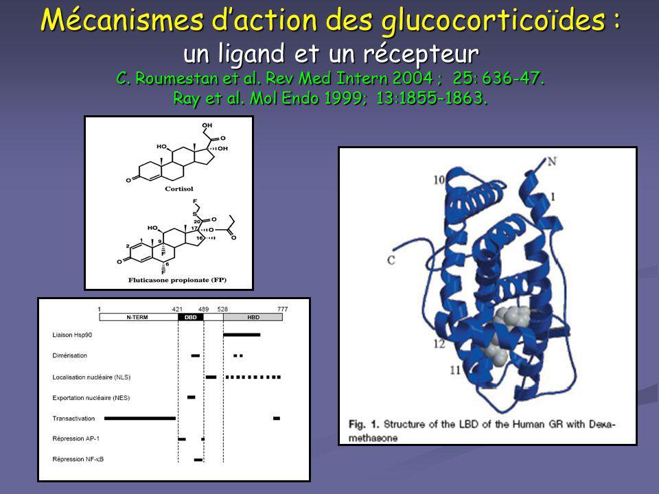 Mécanismes d'action des glucocorticoïdes : un ligand et un récepteur C