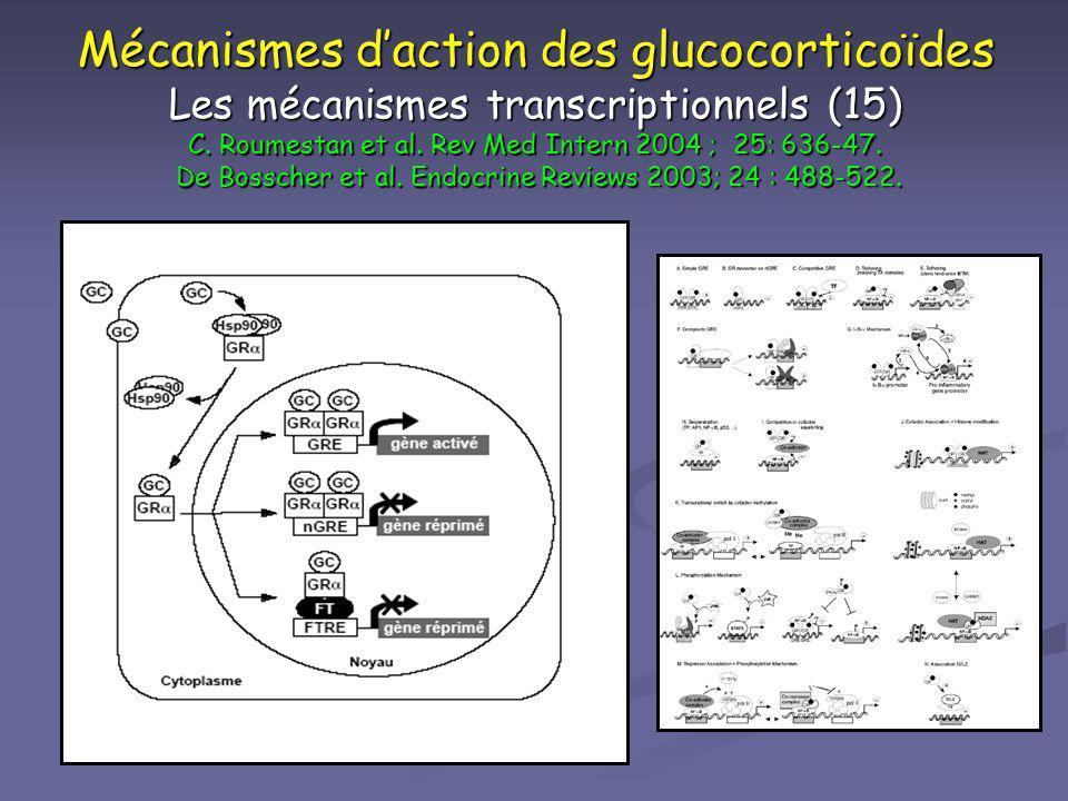 Mécanismes d'action des glucocorticoïdes Les mécanismes transcriptionnels (15) C. Roumestan et al. Rev Med Intern 2004 ; 25: 636-47. De Bosscher et al. Endocrine Reviews 2003; 24 : 488-522.