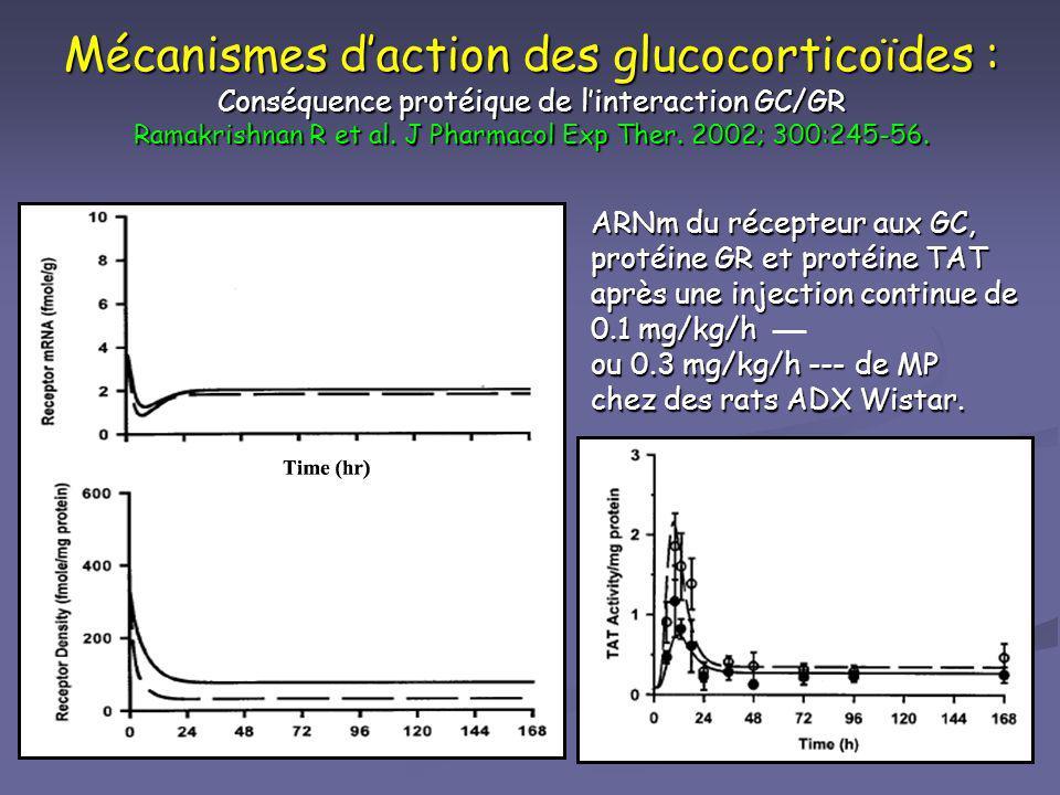 Mécanismes d'action des glucocorticoïdes : Conséquence protéique de l'interaction GC/GR Ramakrishnan R et al. J Pharmacol Exp Ther. 2002; 300:245-56.