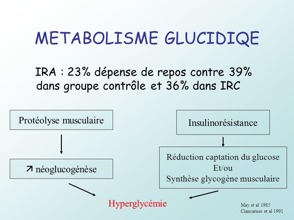 METABOLISME GLUCIDIQE