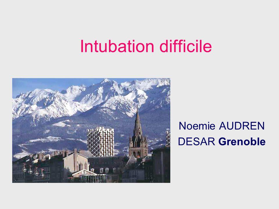 Noemie AUDREN DESAR Grenoble