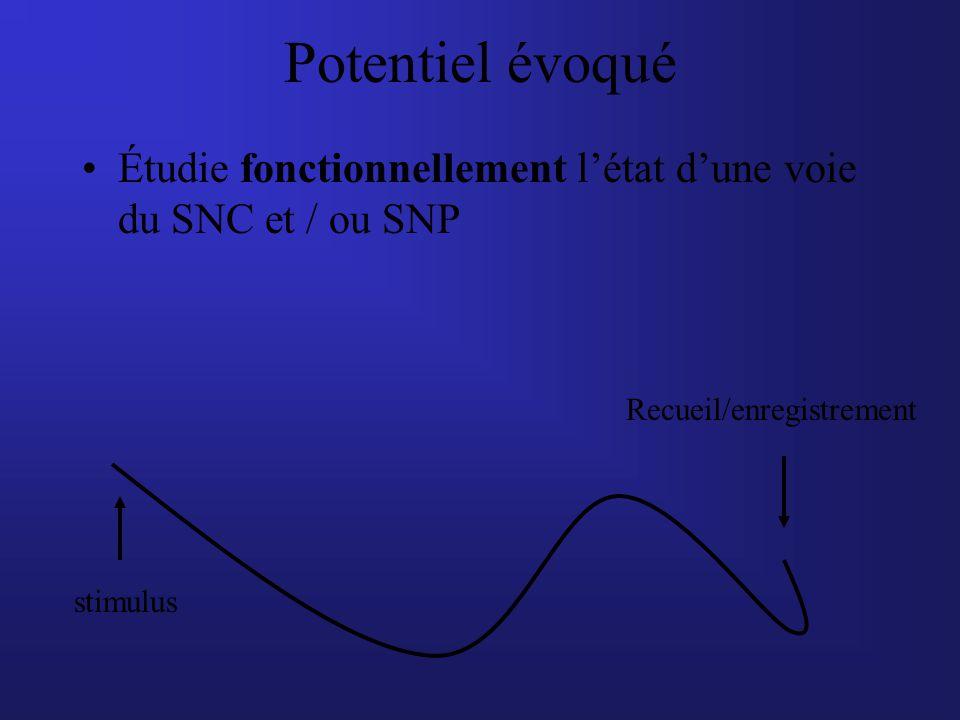 Potentiel évoqué Étudie fonctionnellement l'état d'une voie du SNC et / ou SNP. Recueil/enregistrement.