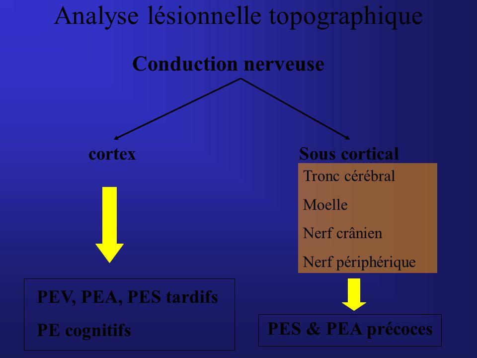 Analyse lésionnelle topographique