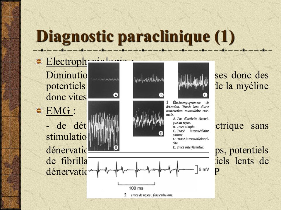 Diagnostic paraclinique (1)