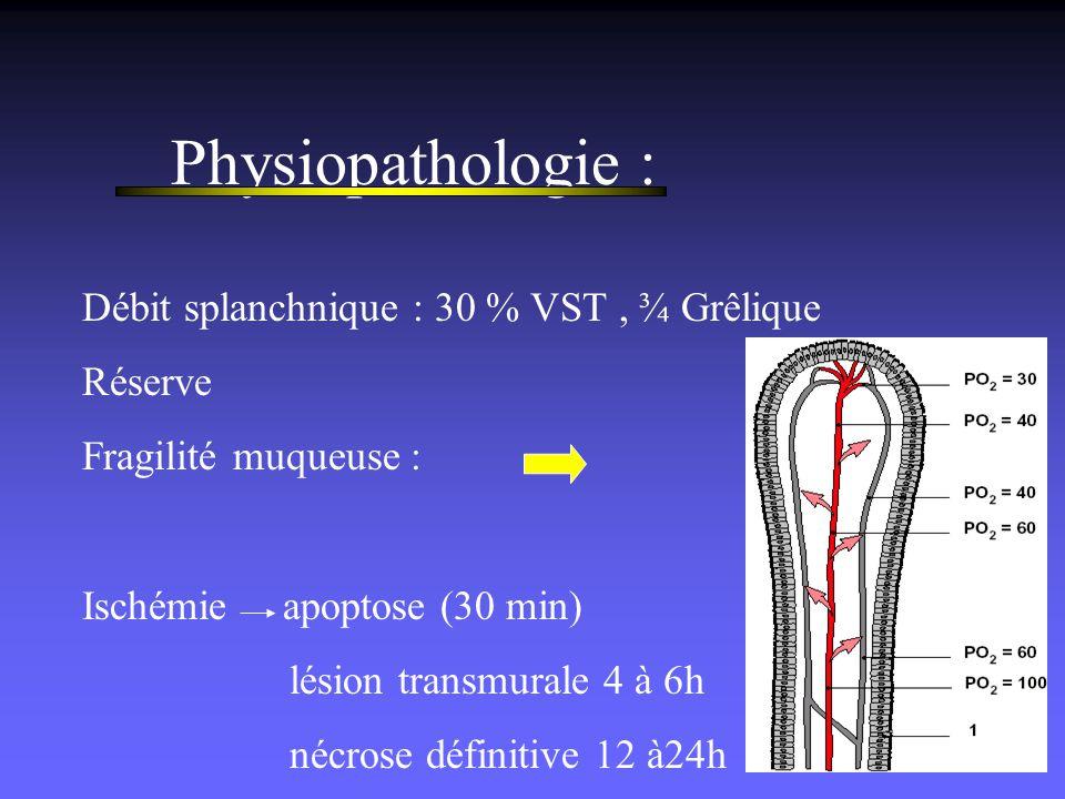 Physiopathologie : Débit splanchnique : 30 % VST , ¾ Grêlique Réserve