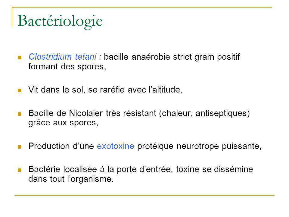 Bactériologie Clostridium tetani : bacille anaérobie strict gram positif formant des spores, Vit dans le sol, se raréfie avec l'altitude,