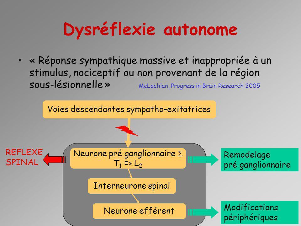 Dysréflexie autonome