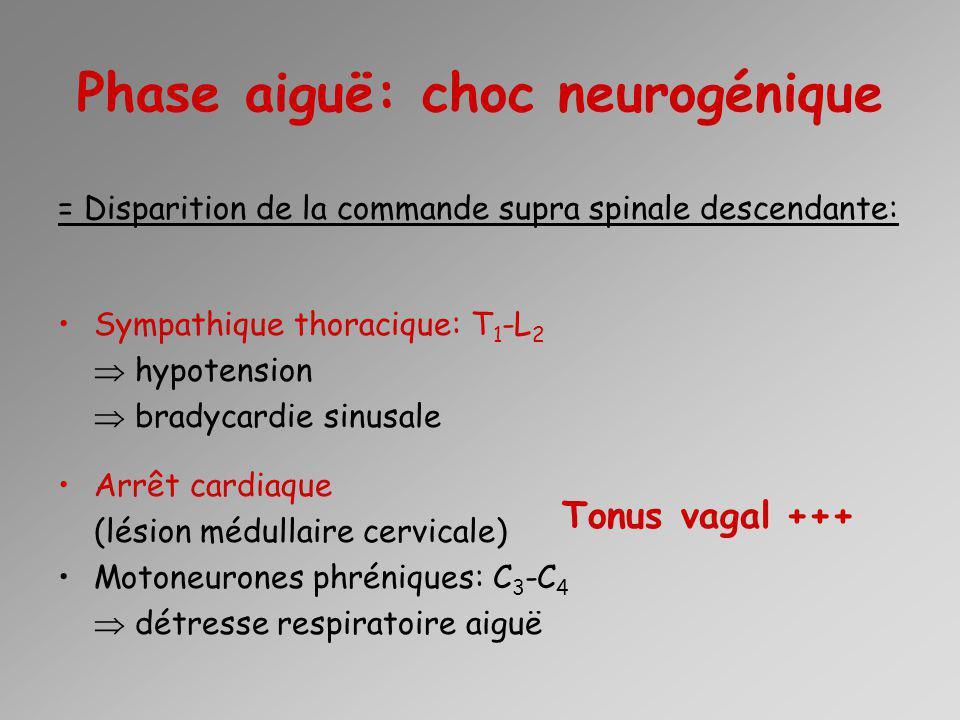 Phase aiguë: choc neurogénique