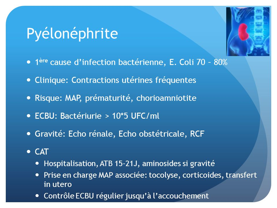 Pyélonéphrite 1ère cause d'infection bactérienne, E. Coli 70 – 80%