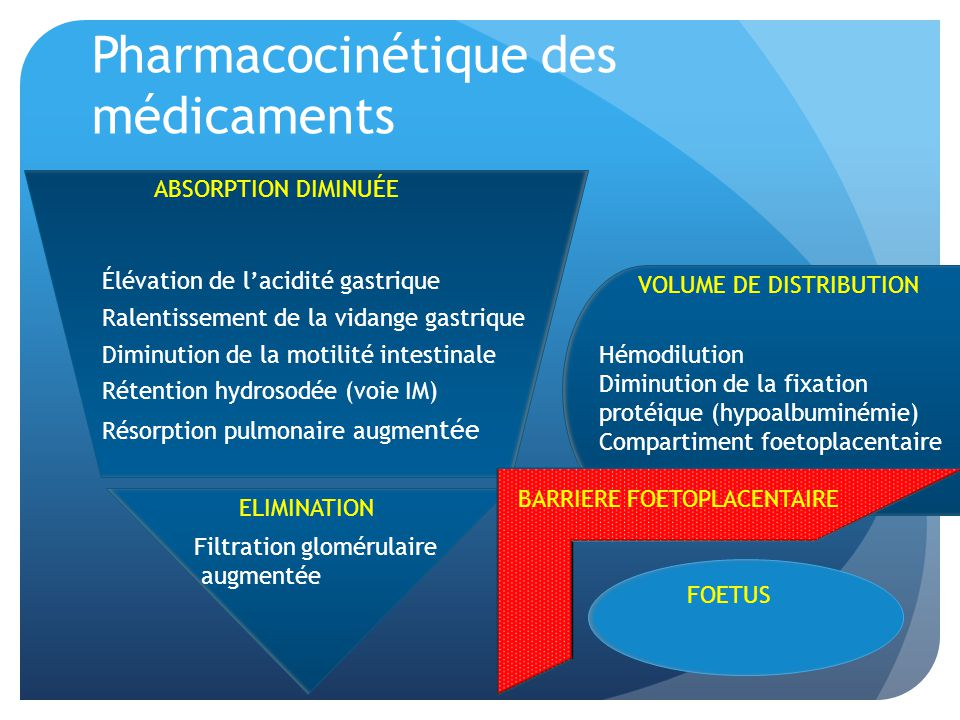 Pharmacocinétique des médicaments