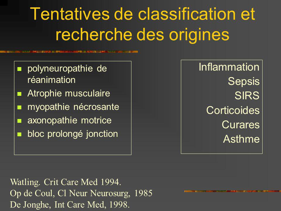 Tentatives de classification et recherche des origines