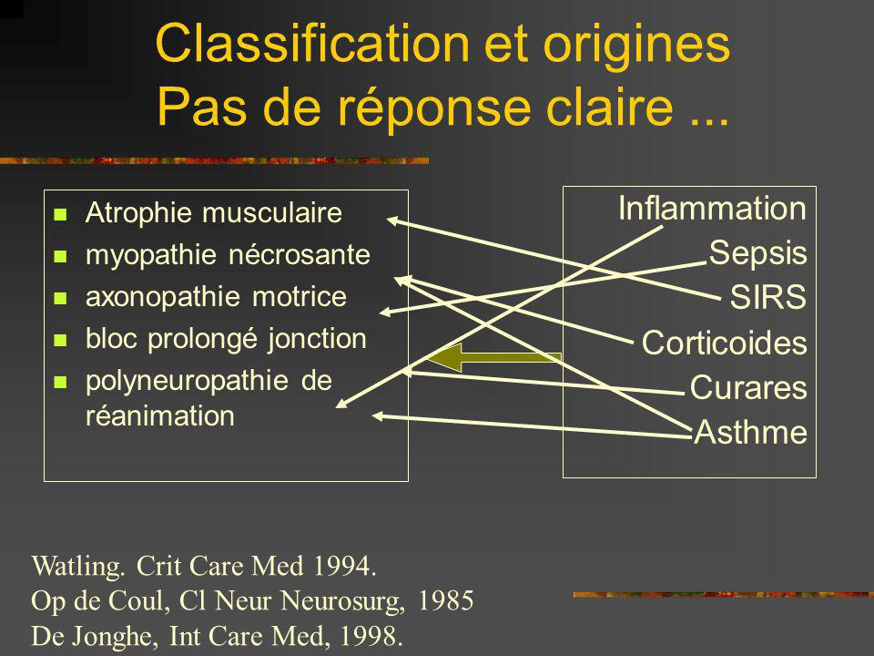Classification et origines Pas de réponse claire ...
