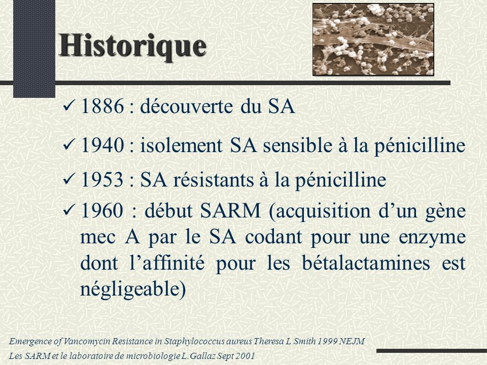 Historique 1886 : découverte du SA