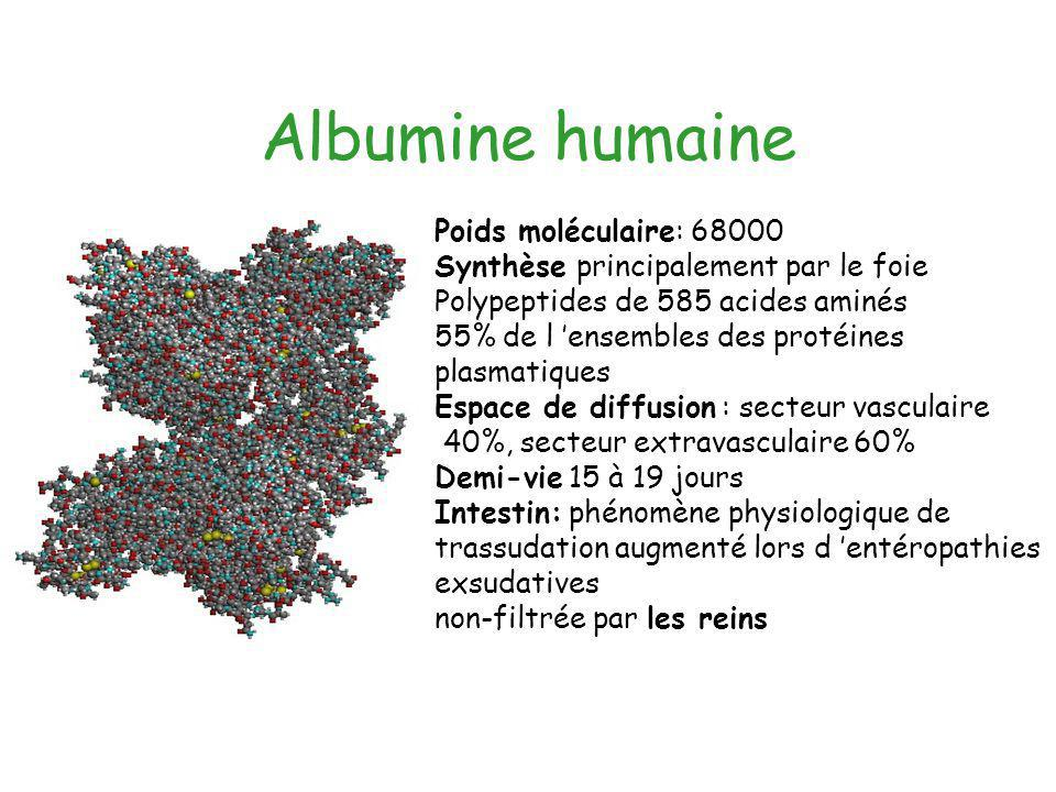 Albumine humaine Poids moléculaire: 68000