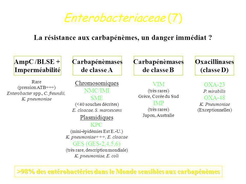 La résistance aux carbapénèmes, un danger immédiat
