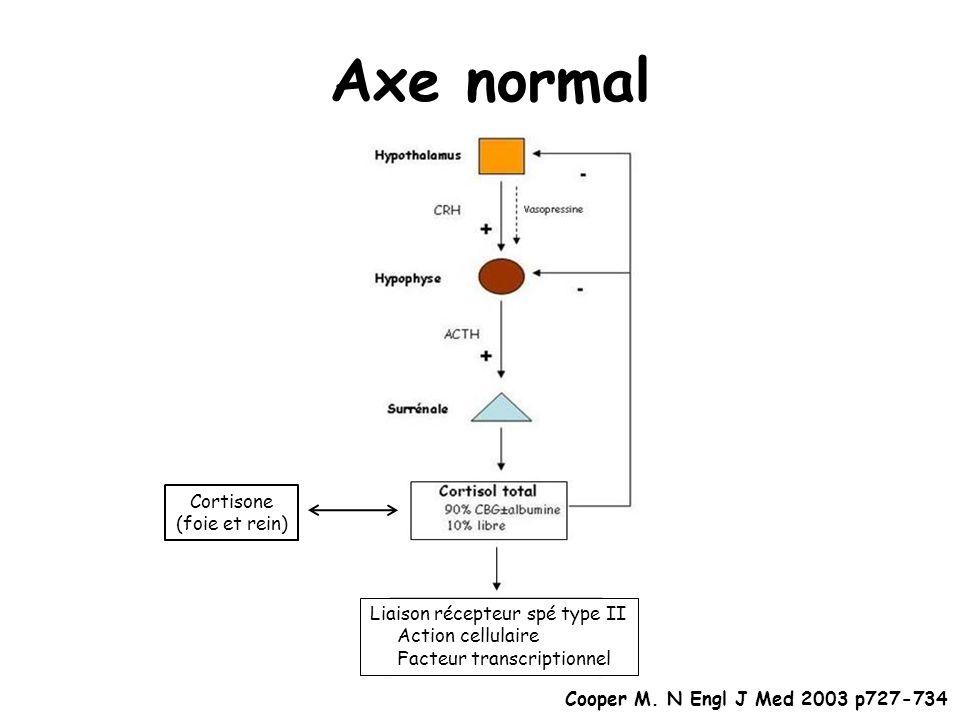 Axe normal Cortisone (foie et rein) Liaison récepteur spé type II