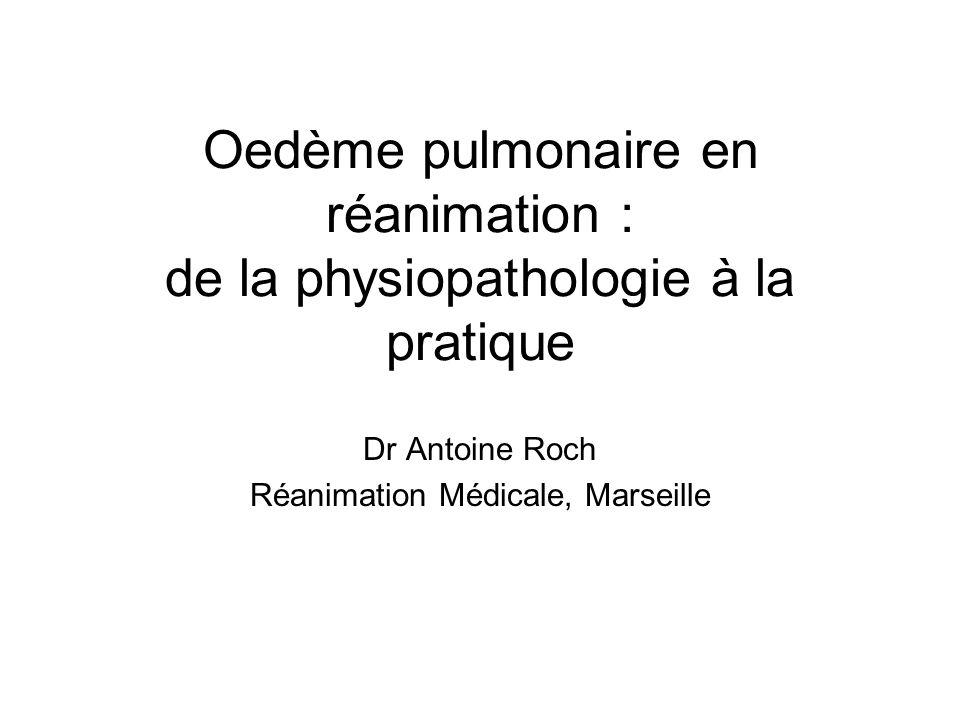 Dr Antoine Roch Réanimation Médicale, Marseille