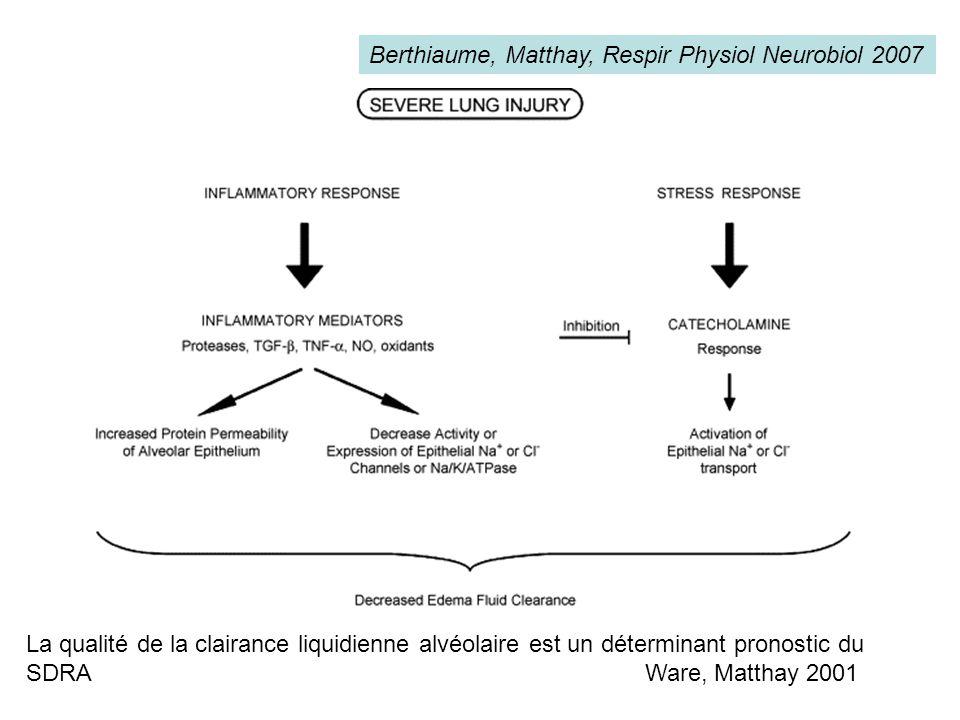 Berthiaume, Matthay, Respir Physiol Neurobiol 2007