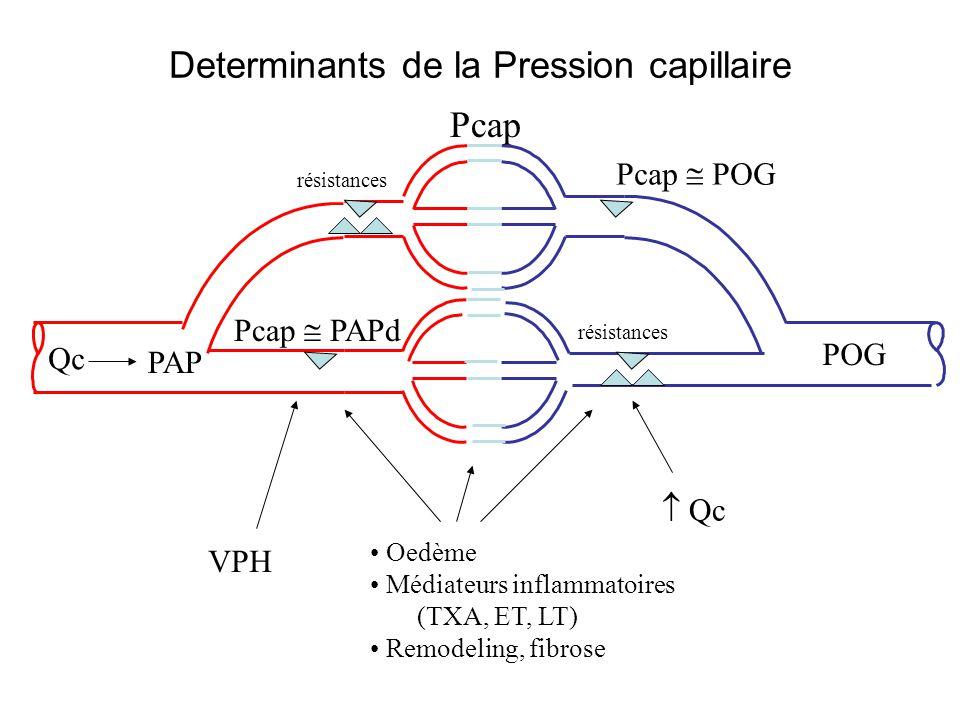Determinants de la Pression capillaire