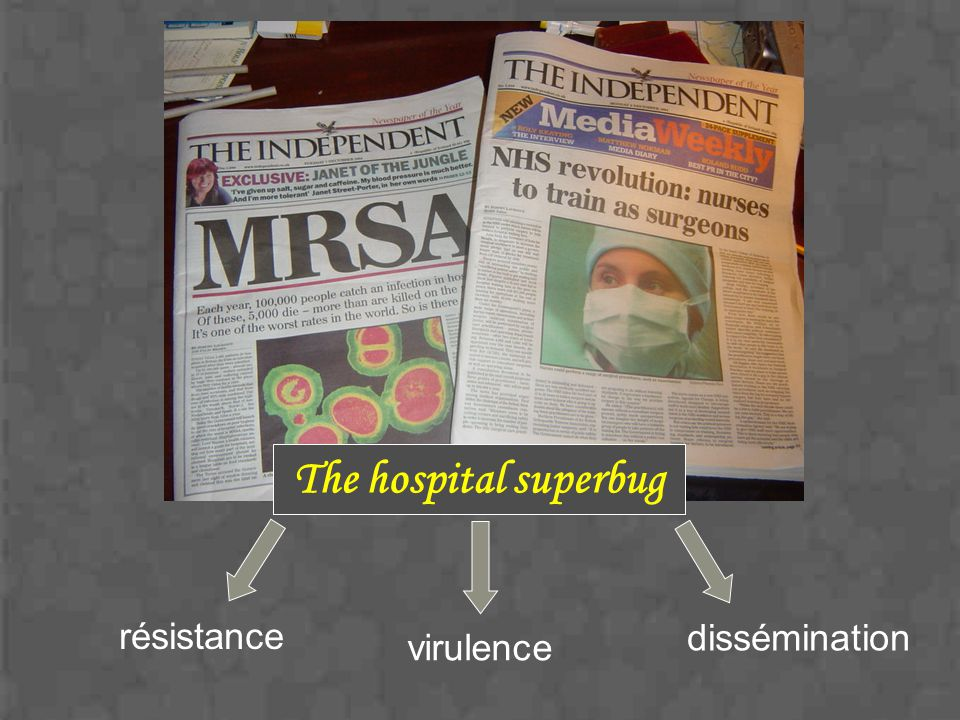 The hospital superbug résistance dissémination virulence