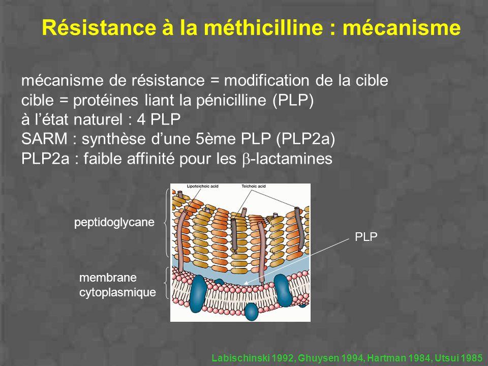 Résistance à la méthicilline : mécanisme