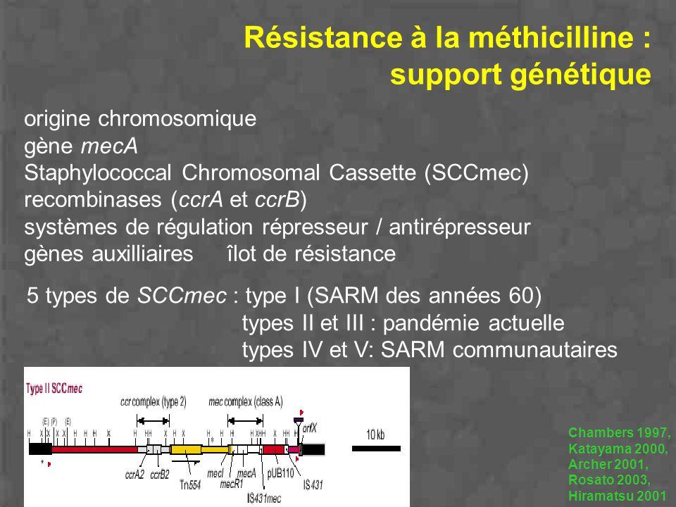 Résistance à la méthicilline : support génétique