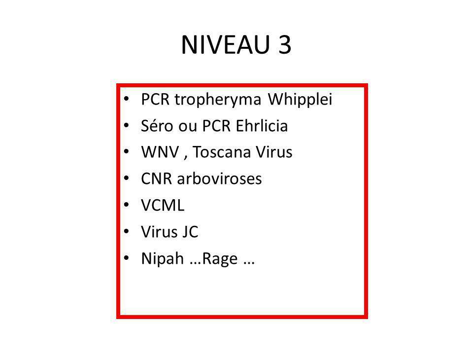 NIVEAU 3 PCR tropheryma Whipplei Séro ou PCR Ehrlicia