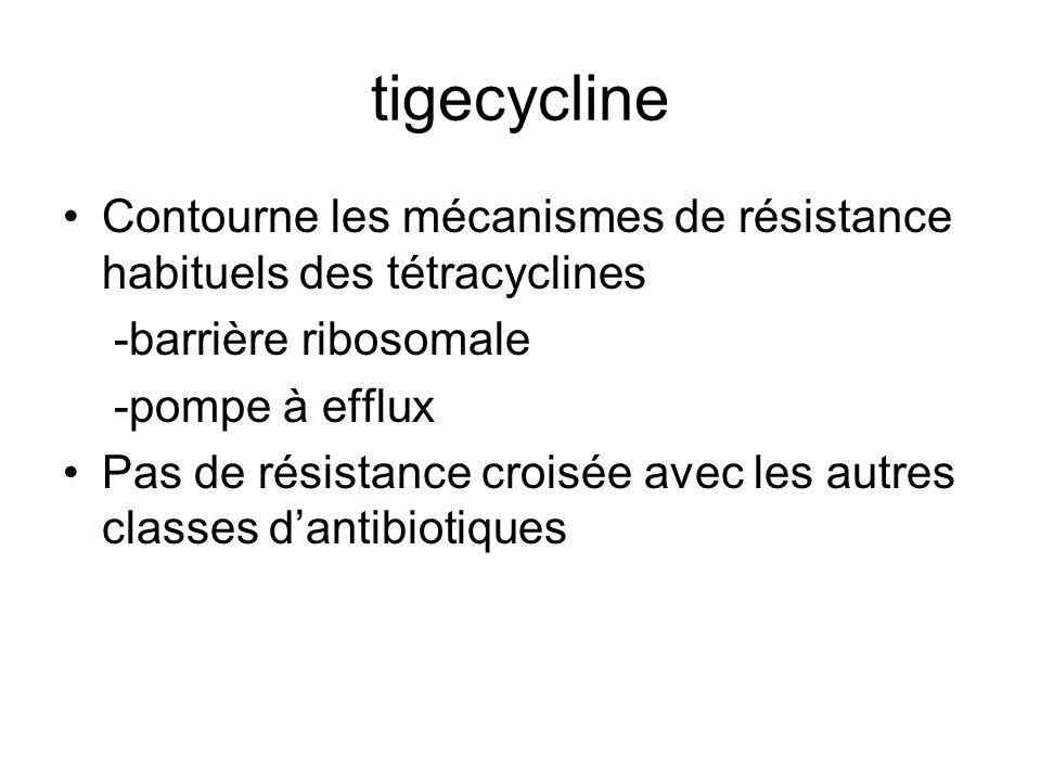 tigecycline Contourne les mécanismes de résistance habituels des tétracyclines. -barrière ribosomale.
