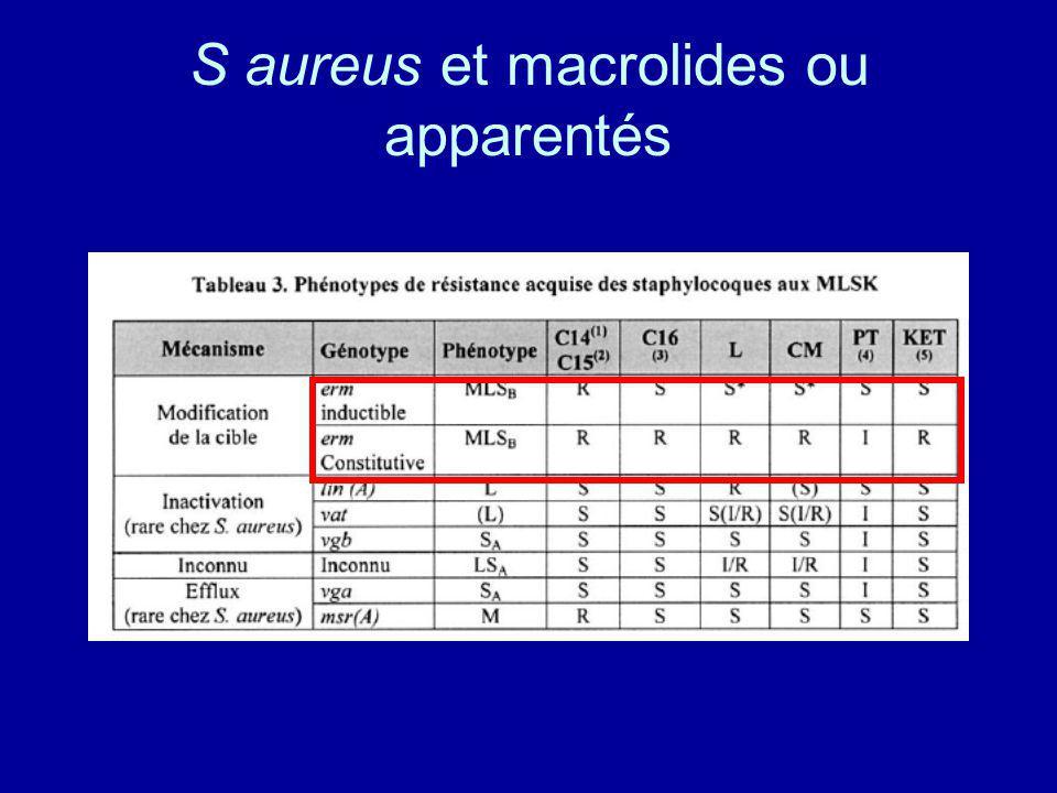 S aureus et macrolides ou apparentés