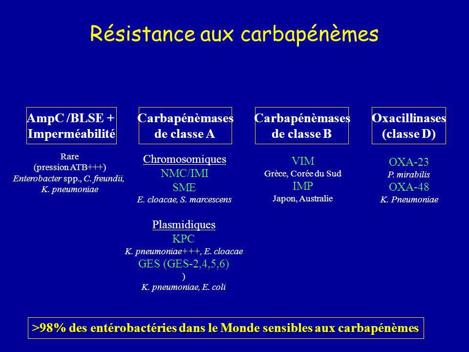 Résistance aux carbapénèmes