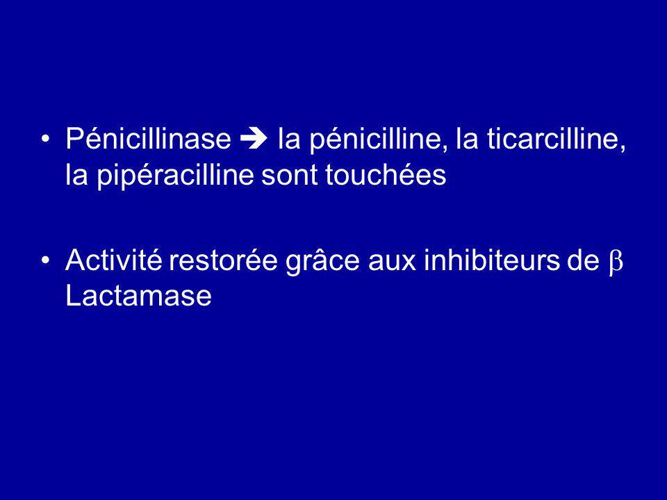Pénicillinase  la pénicilline, la ticarcilline, la pipéracilline sont touchées