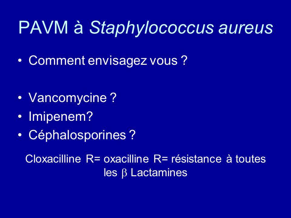 PAVM à Staphylococcus aureus