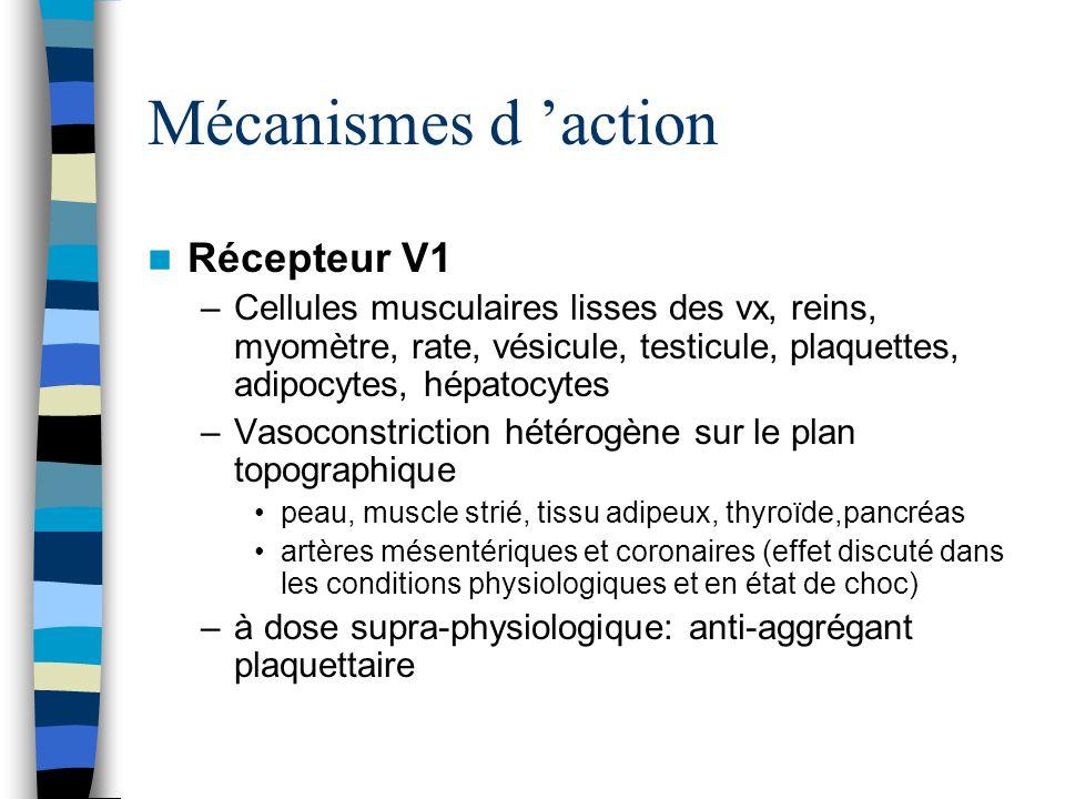Mécanismes d 'action Récepteur V1