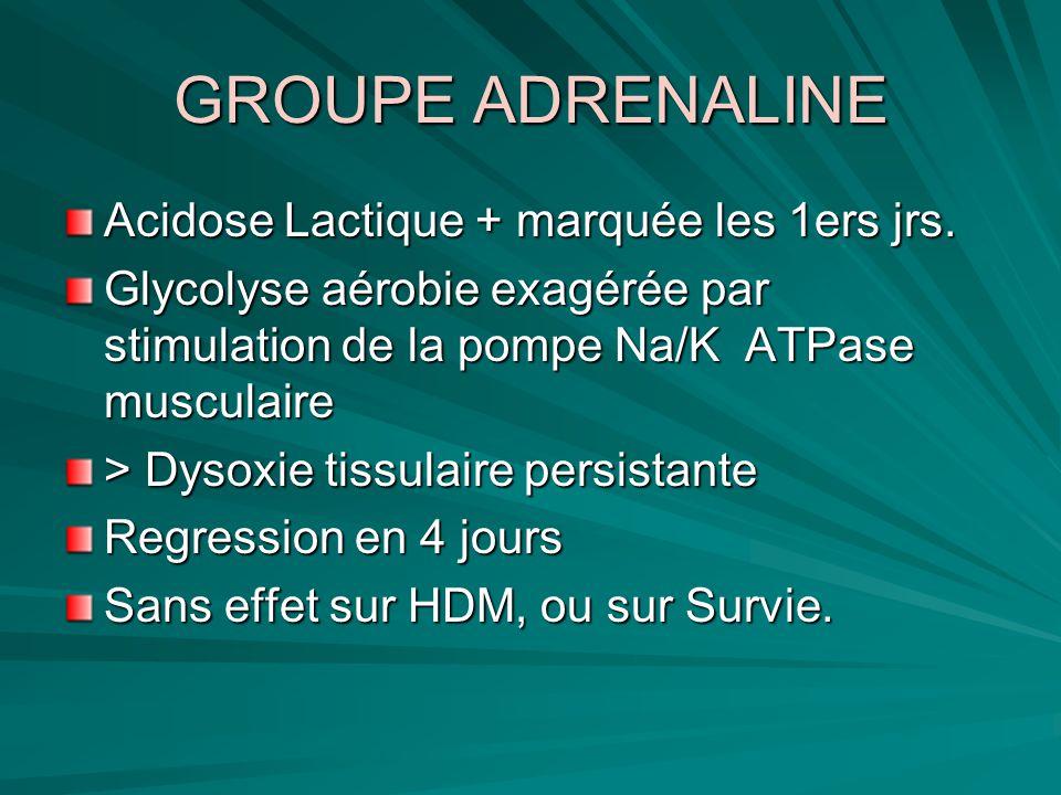 GROUPE ADRENALINE Acidose Lactique + marquée les 1ers jrs.
