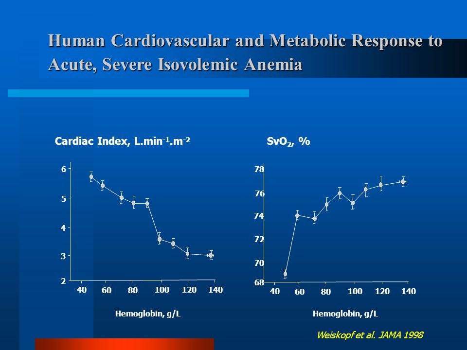 Human Cardiovascular and Metabolic Response to Acute, Severe Isovolemic Anemia